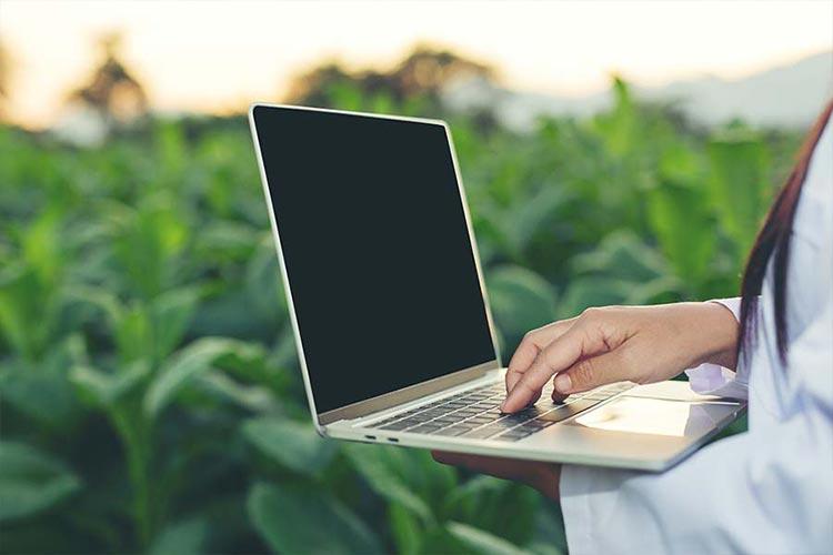 Estudiá Dirección Estratégica de Costos Agrícolas, Ganaderos e Industrias en UNSTA